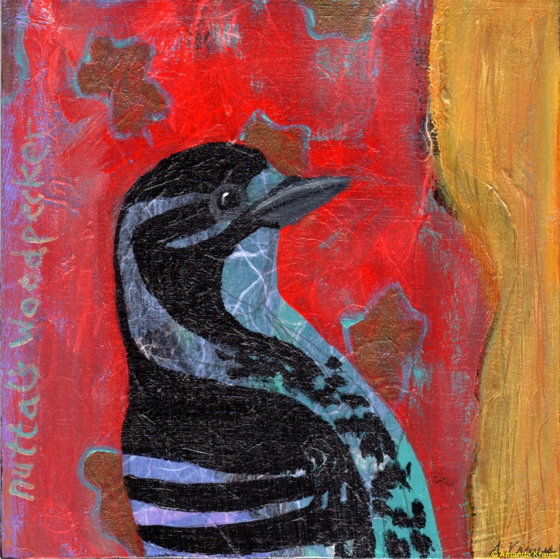 39 nuttals-woodpecker039aj