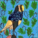 46 barn-owl046ap