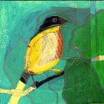 47 song-sparrow047aq