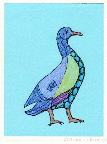 Egyptian Goose007