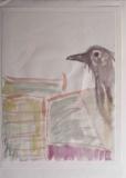 mesa raven