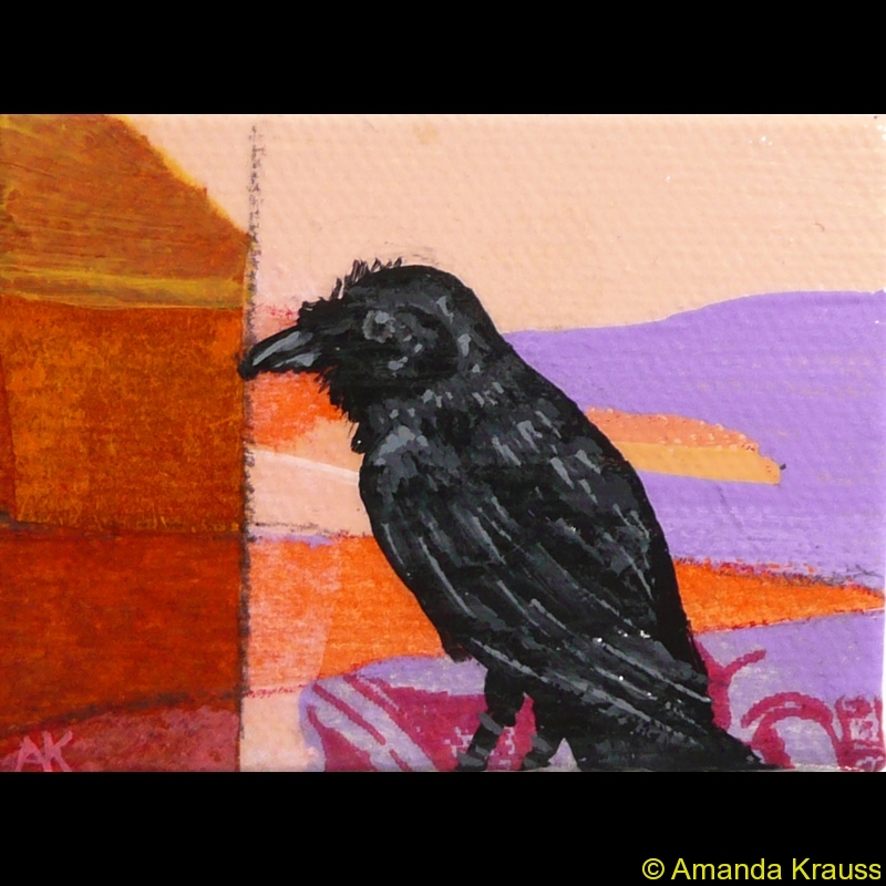 common-raven-mini
