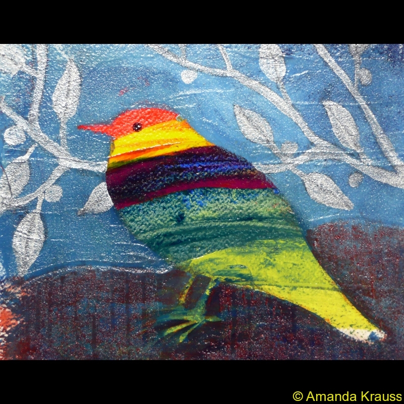moonlit-robin
